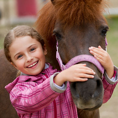 Pinkmead pony