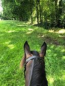 Farm riding 2.jpg