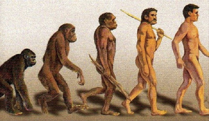 The Traditional Depiction of the Evolution of Man