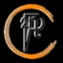 Logo P2N Conseil transparent protec V4 O