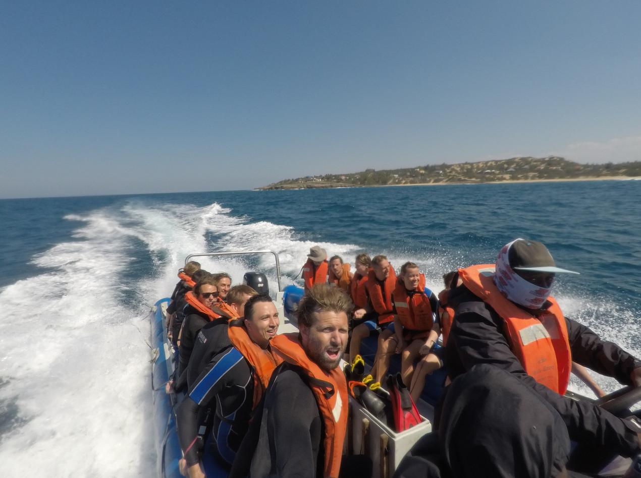 Морское Сафари Серф трип ЮАР Мозамбик Unravel Surf Travel