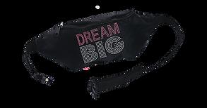 MK  DREAM BIG  fanny-packs.png