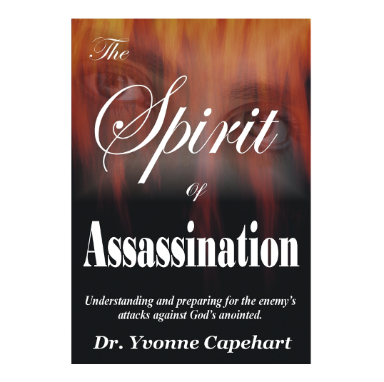 THE SPIRIT OF ASSASSINATION WEB COVER.pn