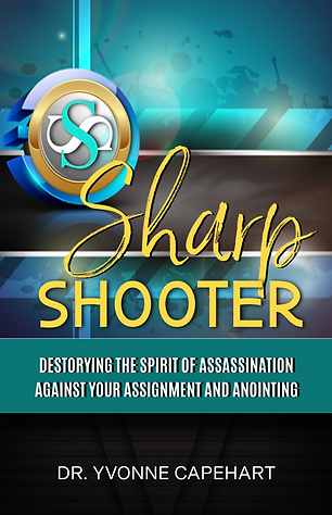 SHARPO SHOOTER BOOK COVER IDEA  TEAL AND