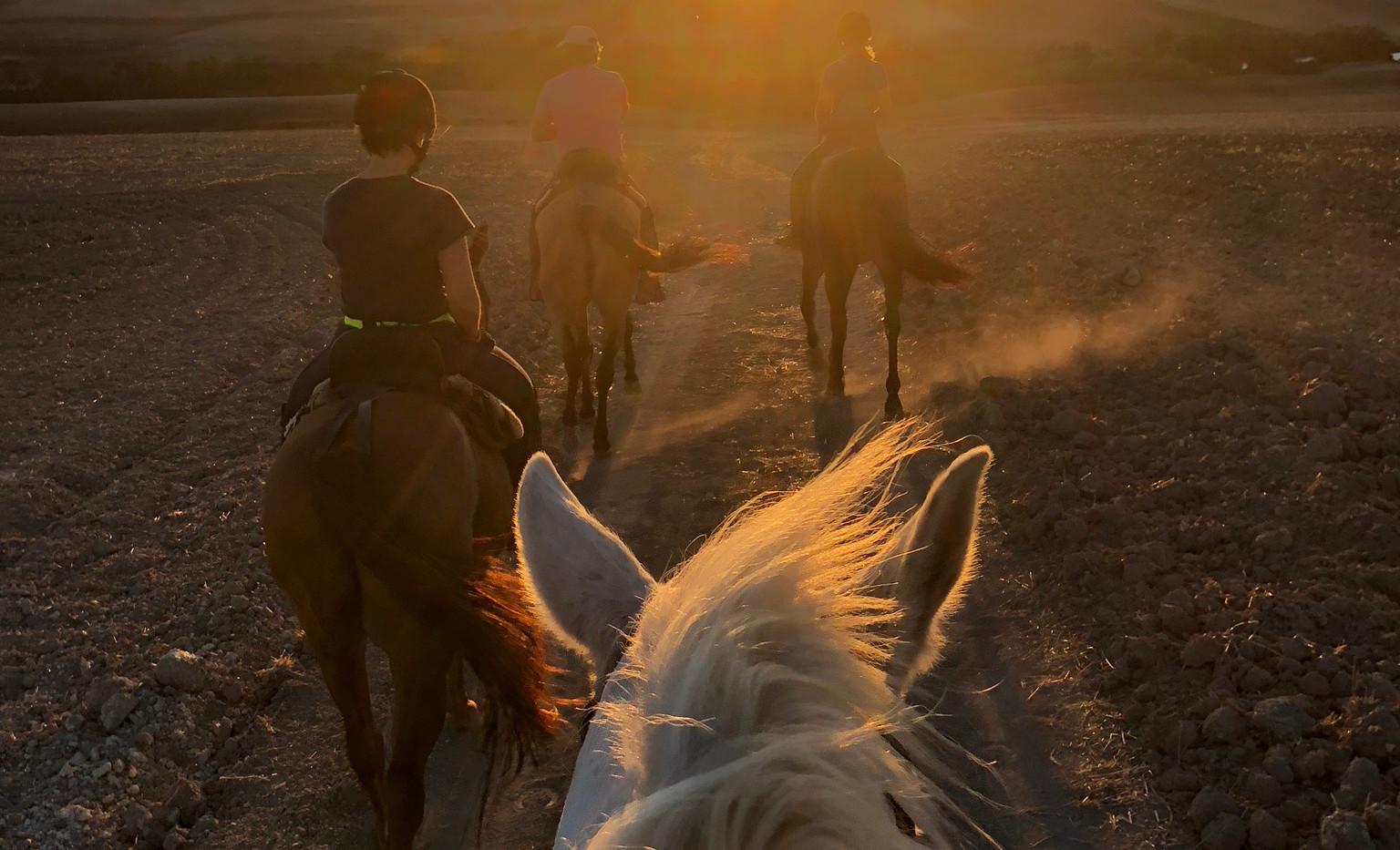 Ridetur i solnedgang