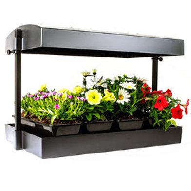 Sunblaster T5HO Growlight Garden