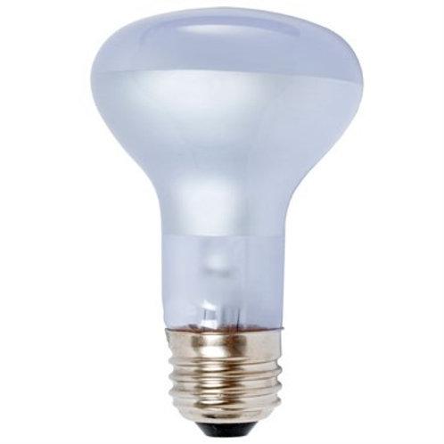 Agrosun Daypot Incandescent Bulb 60W