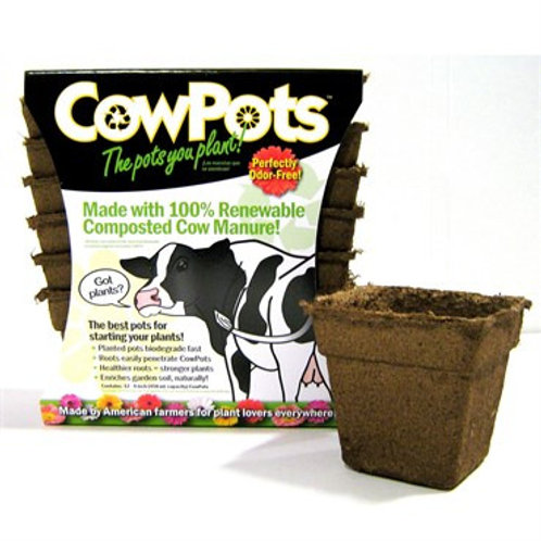 "Cow Pots 4"" Square 12pk"