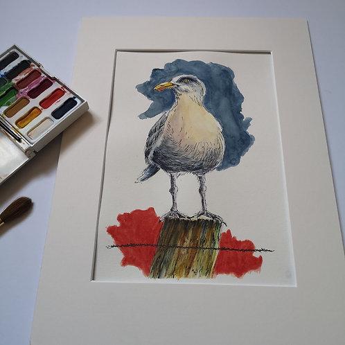 Seagull, Orignal Ink & Watercolour