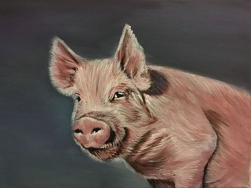 Mischievous Piggy