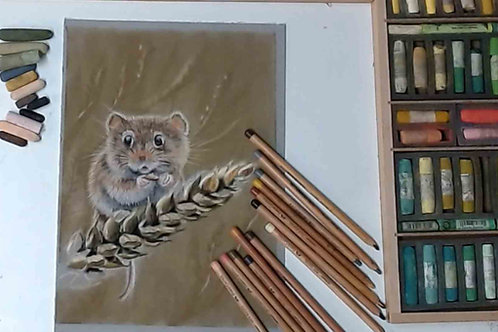 Field Mouse Pastel Tutorial