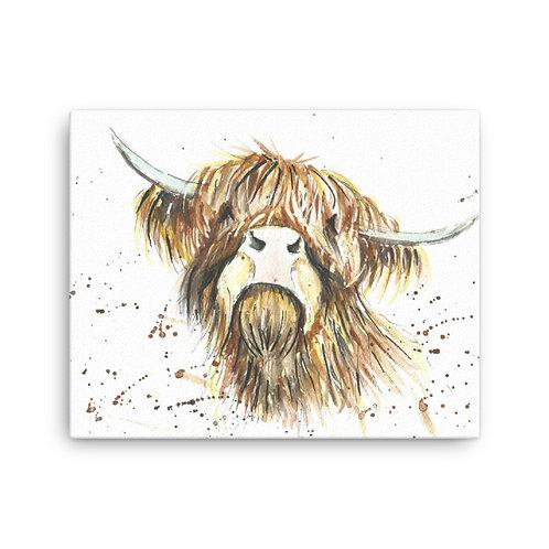 Fergus Highland Cow,  Canvas Print