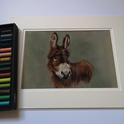 Little Donkey, Original Pastel Painting