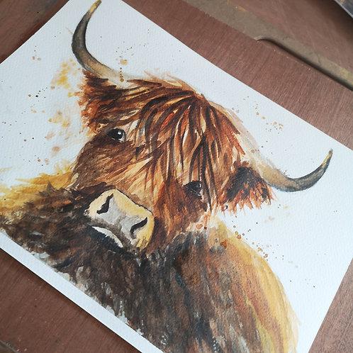 Angus McMoo, Orignal Watercolour