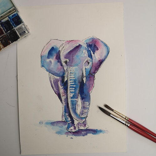 Tembo, A4 watercolour