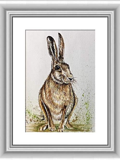 Henry Hare, Original Watercolour