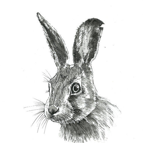 Halfrith Hare, Indian Ink Print