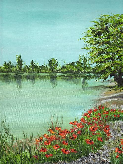 Poppy Path, Acrylic on Deep Canvas