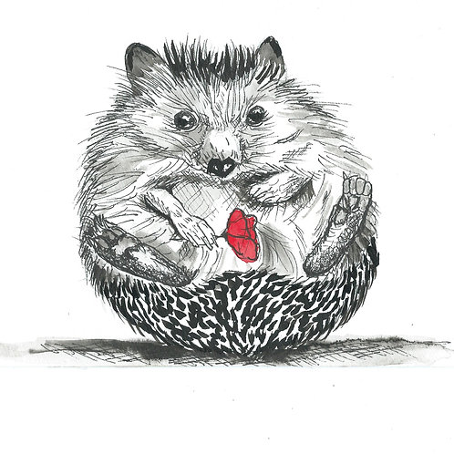 Henrietta the Hedgehog ,Indian Ink  Print