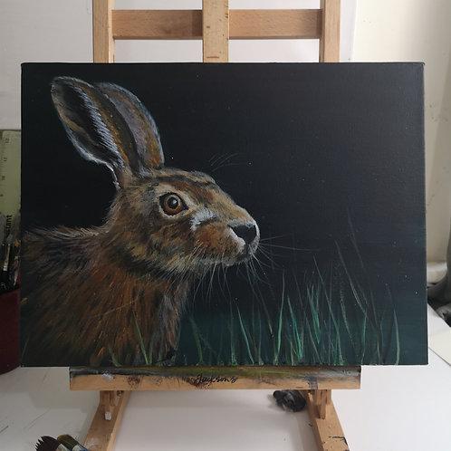 Hare study 2, 12 x 16 in acrylic on deep canvas