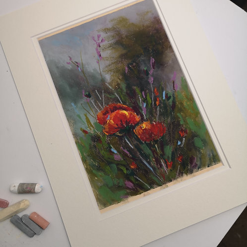 The Poppies, Pastel double mounted  painting