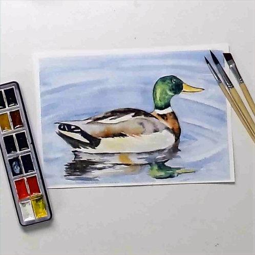 The Mallard Watercolour Tutorial