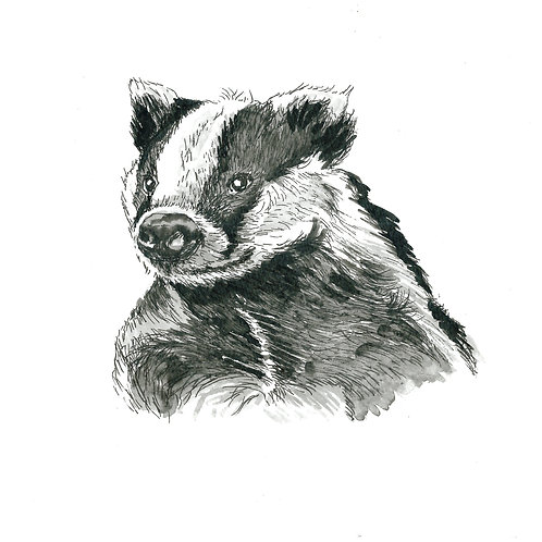 Baldrick the Badger, Original Ink Painting