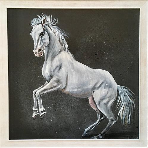Jerusha, Acrylic on Canvas Board Framed