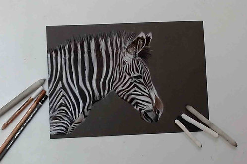 Zebra Charcoal and Chalk Tutorial