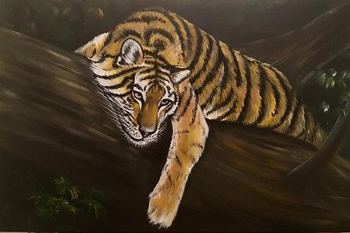 Dozing Tiger, Acrylic on Deep Box Canvas