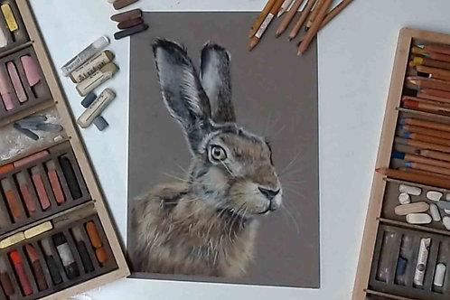 Hare Pastel Tutorial