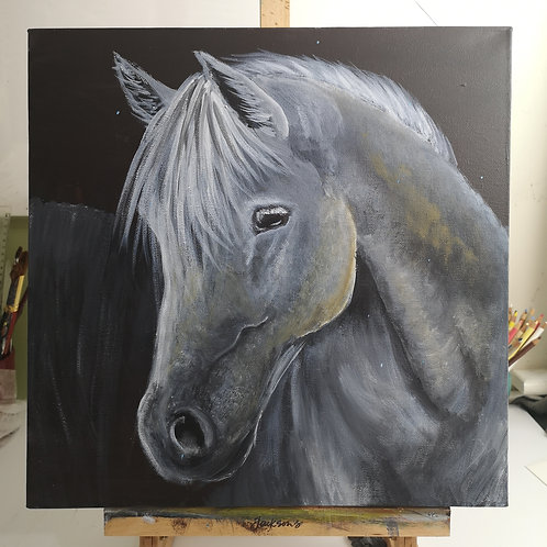 Grey Stallion, 40x40cm acrylic on deep canvas