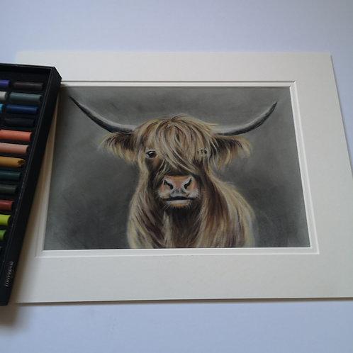 Mini McMoo, Original Pastel Painting