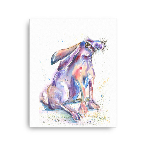 Day Dreamer Hare,  Canvas Print
