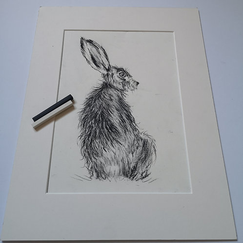 Henry Hare , charcoal and chalk on pastel mat