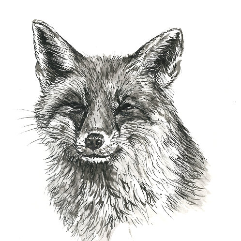 Sylvester Fox, Indian Ink Print