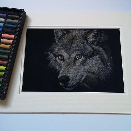 Lone Wolf Original Pastel Painting