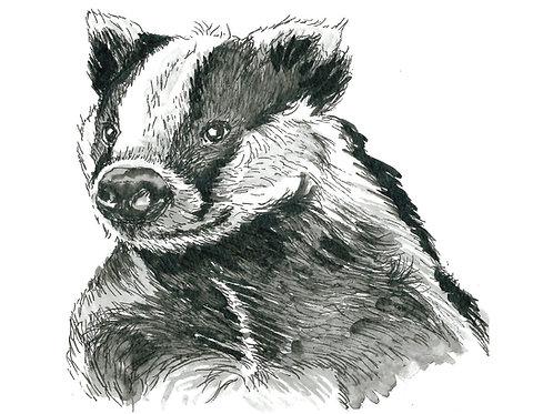 Baldrick the Badger Indian Ink Print