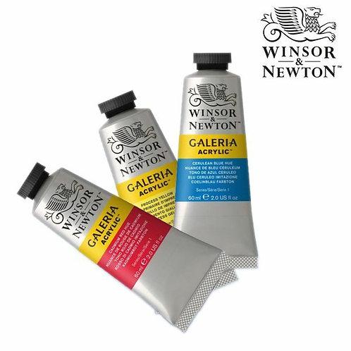Winsor & Newton Galeria Acrylic Paint - 60ml Tubes