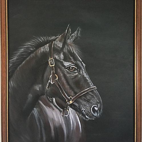 Shadow, Acrylic on Canvas, Framed