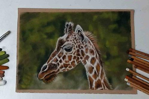 Giraffe Pastel Tutorial