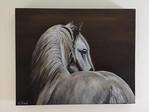 Grey Stallion Acrylic Painting Tutorial