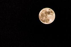 moonpic