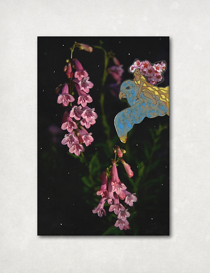 Hoo Garden Card Set