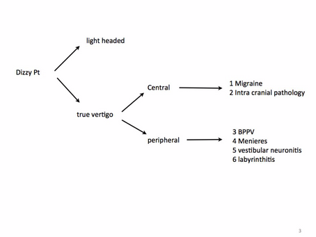 Vertigo: an outline