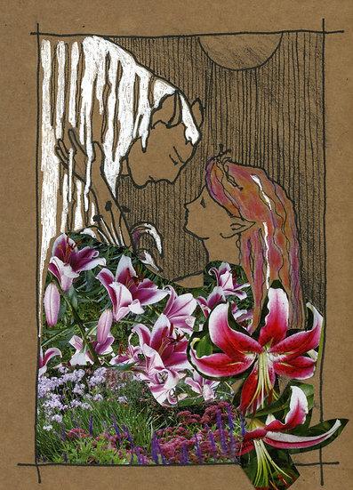 Tiger Lily & Moonlight