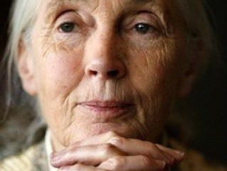 The relief and ease of growing older