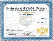 istanbul tesol egitimi, tesol sertifikası, online  tesol egitimi