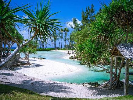 eton_beach_picnic_efate_activities.jpg