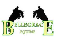 Bellegrace Stud Logo
